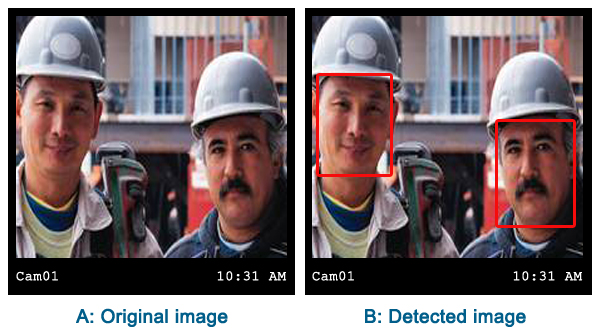 detected faces in C#
